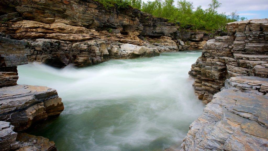 Abisko National Park showing rapids