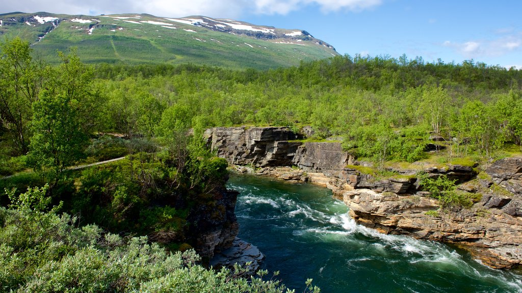 Abisko National Park which includes a river or creek and forests