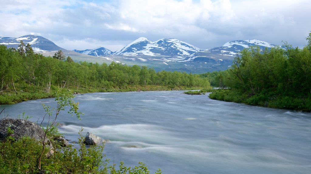 Abisko National Park featuring a river or creek and forests