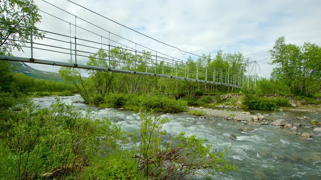 Kebnekaise which includes a suspension bridge or treetop walkway and a river or creek