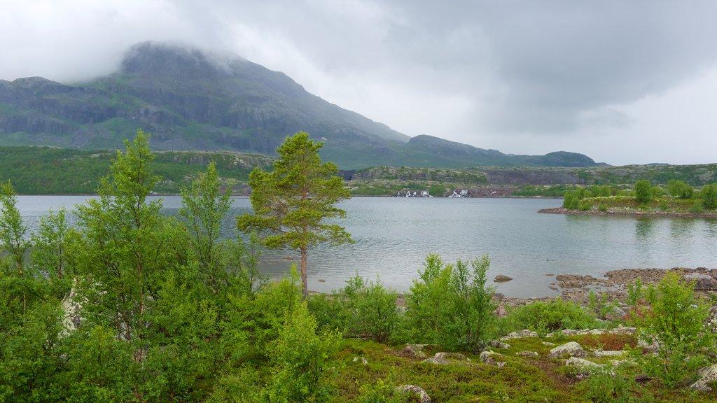 Parque Nacional de Stora Sjofallet mostrando montañas, neblina o niebla y un río o arroyo