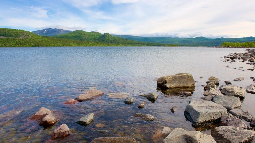 Parque Nacional de Stora Sjofallet ofreciendo un río o arroyo