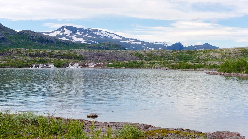 Parque Nacional de Stora Sjofallet mostrando un lago o abrevadero