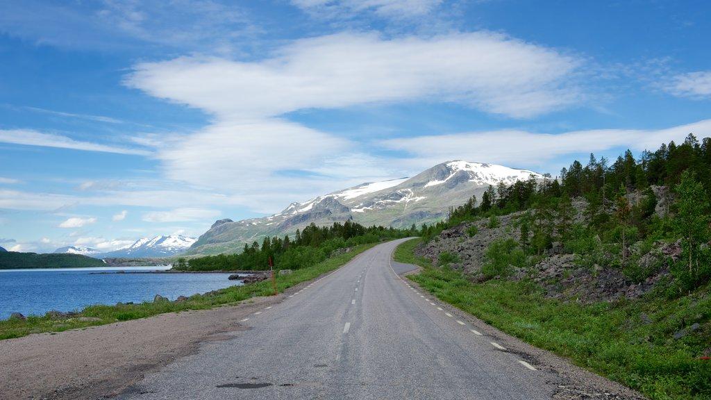 Parque Nacional de Stora Sjofallet que incluye escenas urbanas