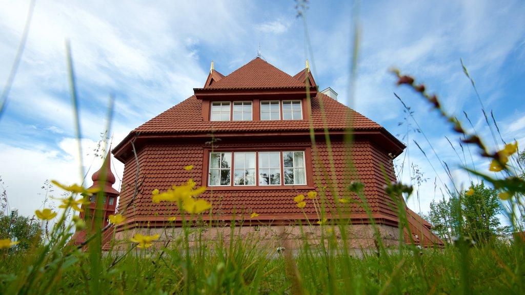 Kiruna Kyrka showing a house