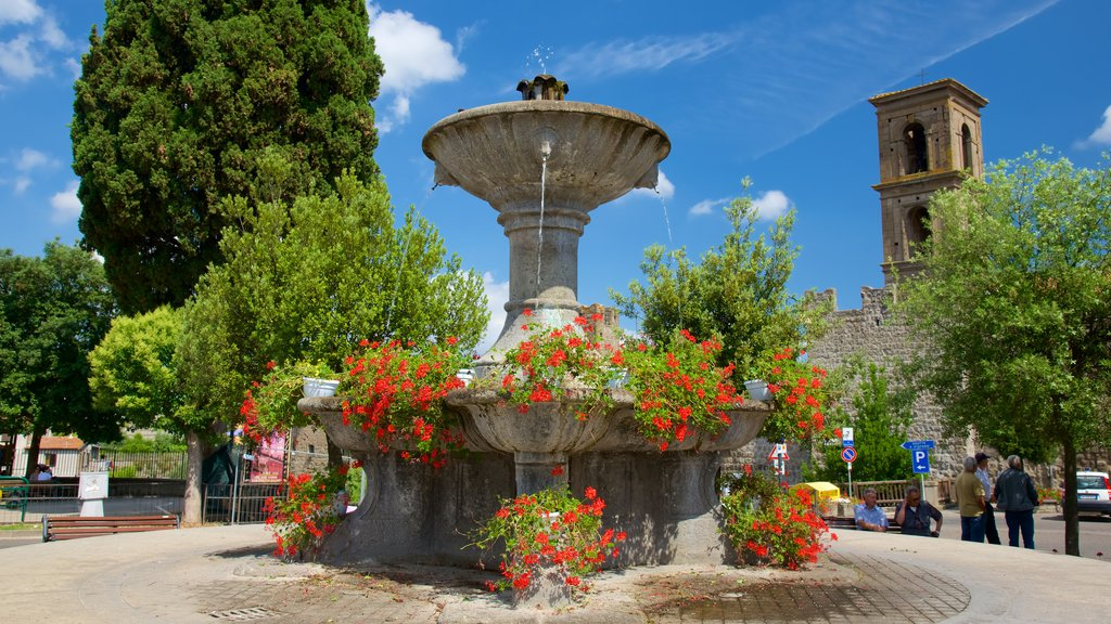 Vitorchiano featuring flowers and a fountain