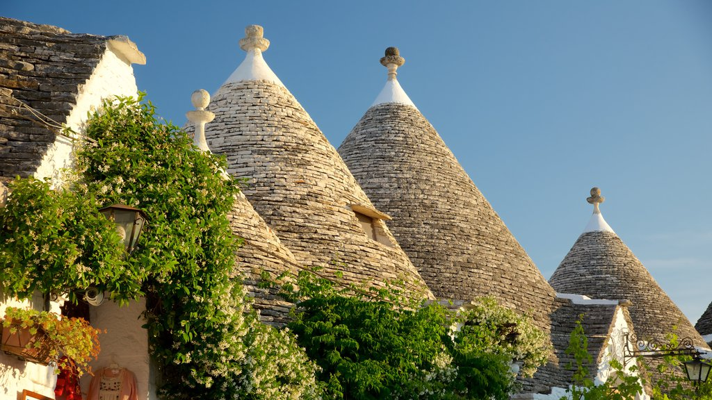 Alberobello showing heritage architecture and a city