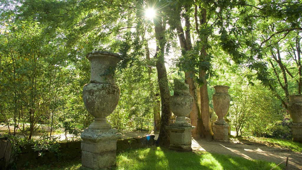 Parco dei Mostri which includes forest scenes