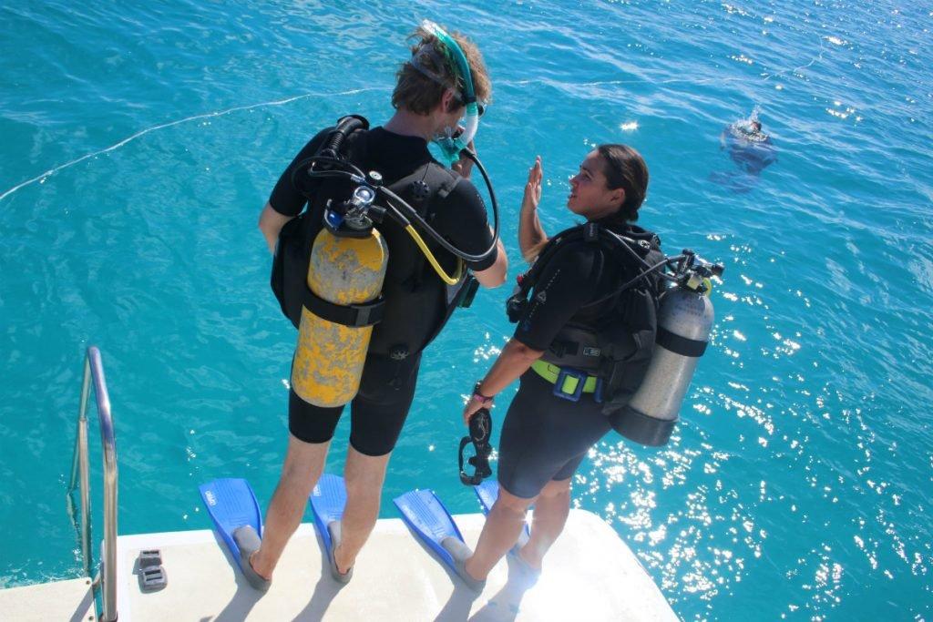 Tauchen am Great Barrier Reef