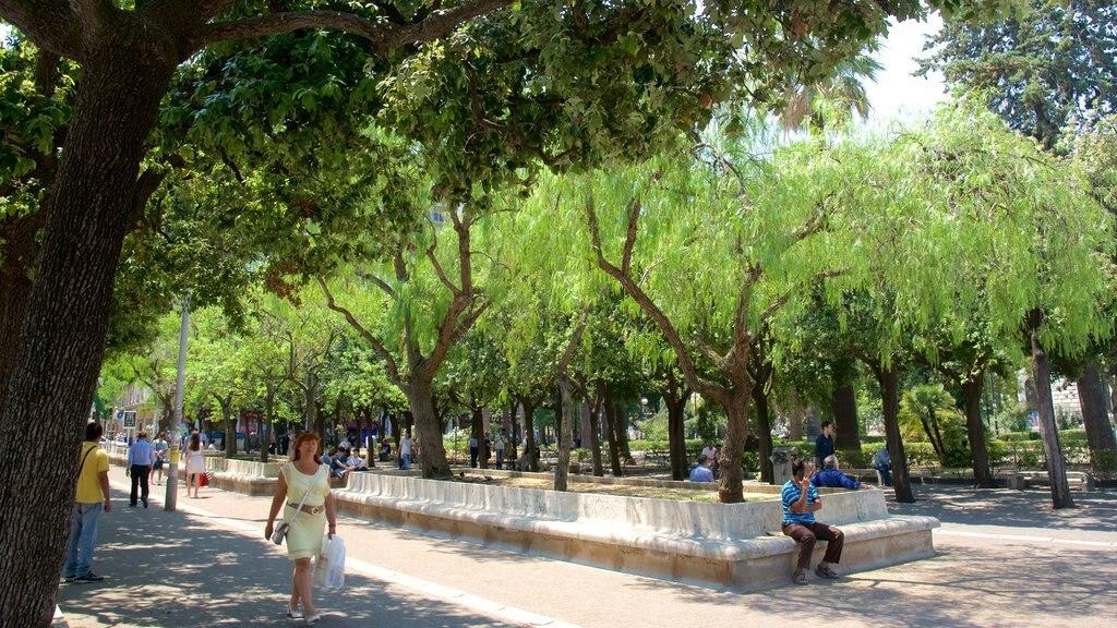 Bari featuring a park