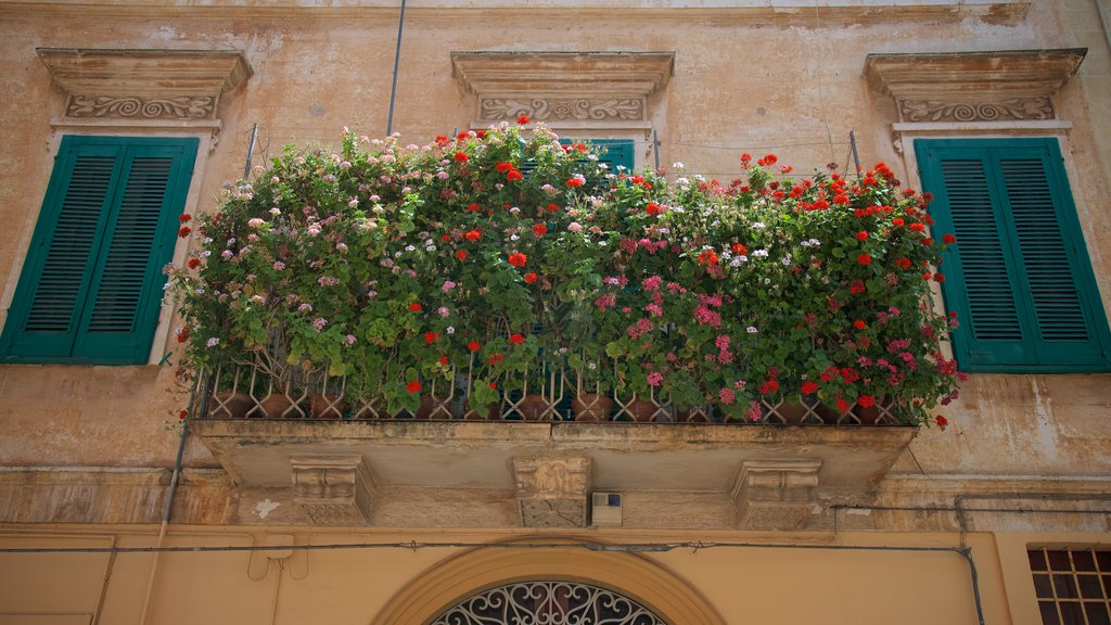 Monopoli which includes flowers