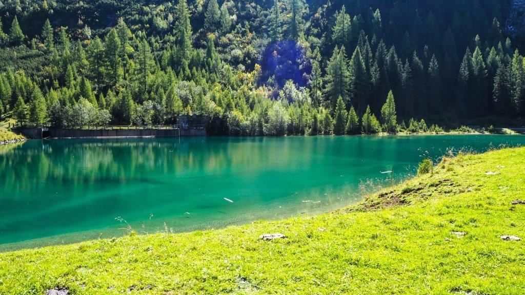 Der Schlierersee - ein Traum in grün.