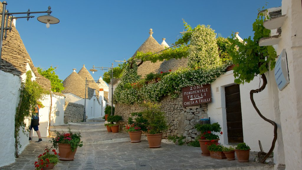 Alberobello showing a sunset and flowers