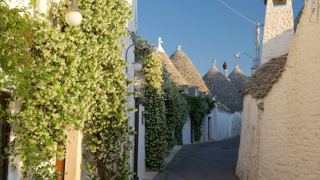 Alberobello which includes a sunset and flowers