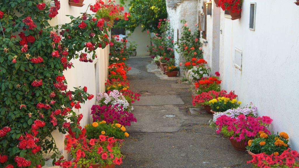 Alberobello which includes flowers