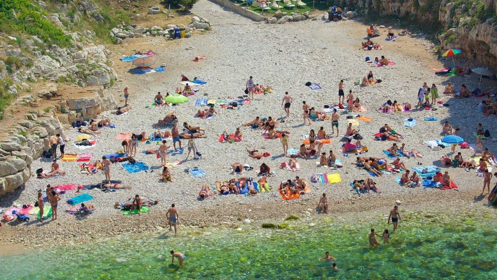 Polignano a Mare mostrando costa escarpada y una playa de guijarros y también un gran grupo de personas