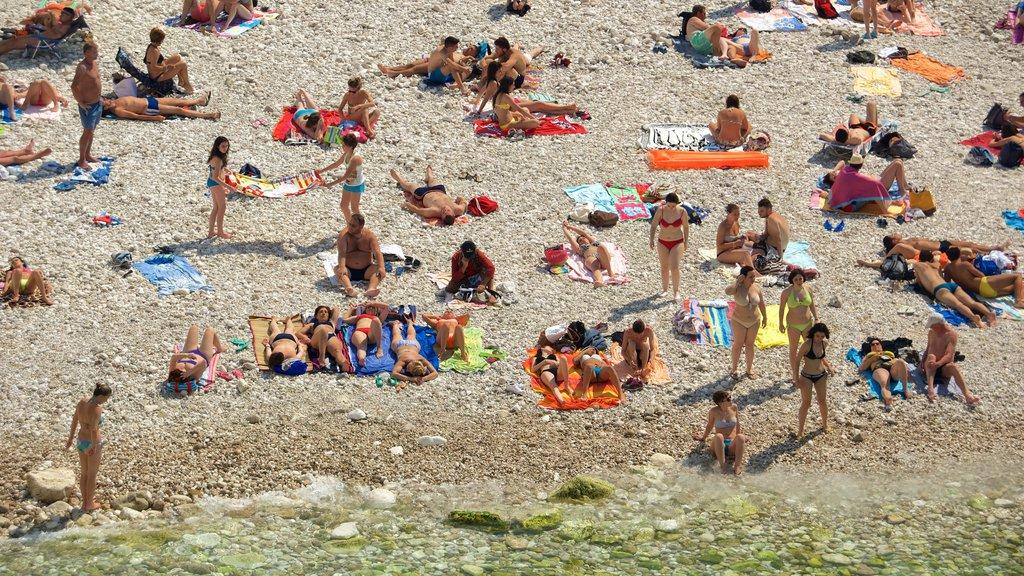 Polignano a Mare mostrando una playa de guijarros y también un gran grupo de personas