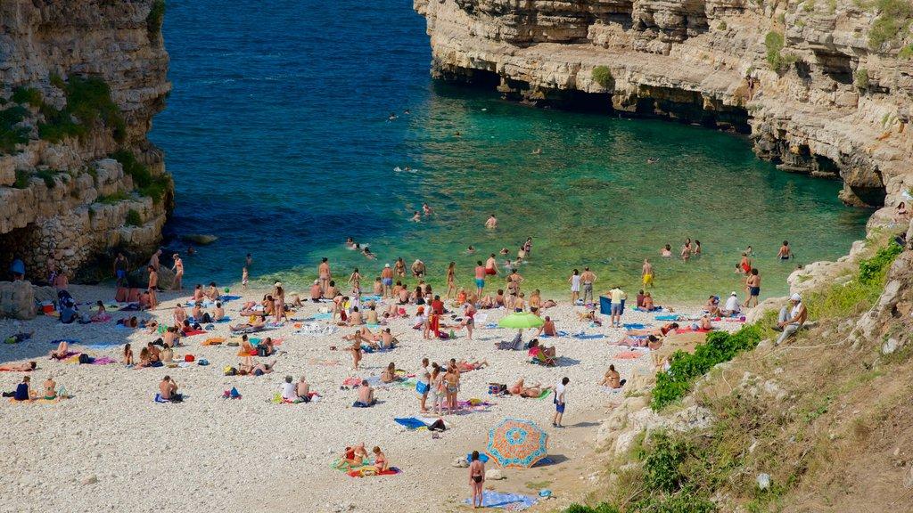 Polignano a Mare mostrando costa rocosa y una playa de guijarros y también un gran grupo de personas