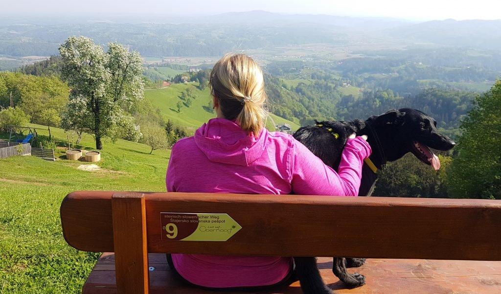 Hundefreundliche Ferienhäuser in der Steiermark