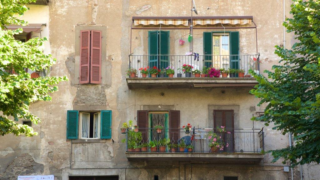 Palazzo Chigi-Albani que incluye una casa y flores