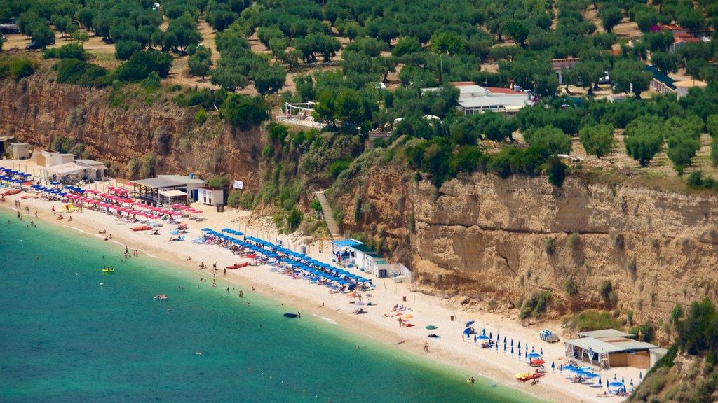 Península Gargano mostrando vistas generales de la costa y una playa de arena