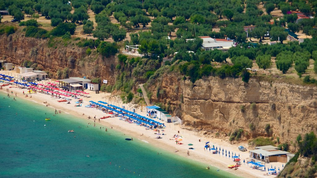 Gargano Peninsula featuring a beach and general coastal views