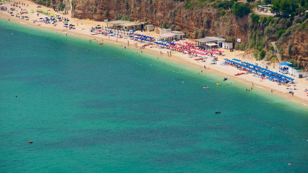 Península Gargano que incluye una playa y vistas generales de la costa