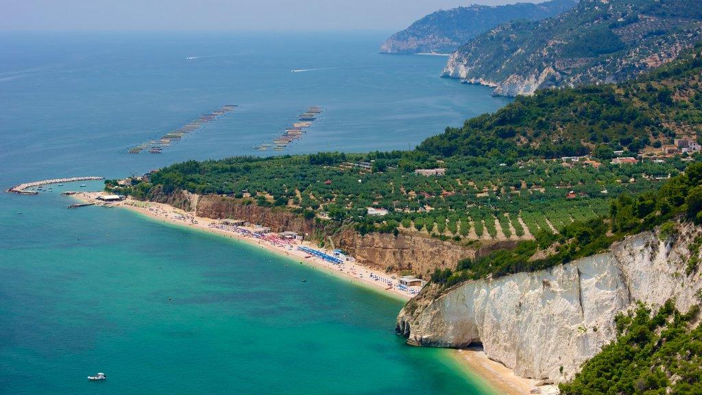 Península Gargano ofreciendo vistas generales de la costa y una playa de arena