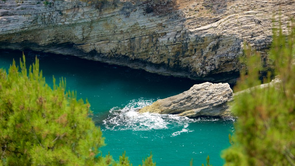 Península Gargano mostrando costa escarpada