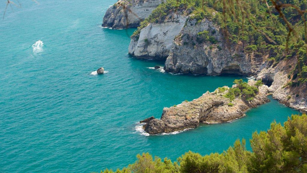 Península Gargano ofreciendo costa escarpada