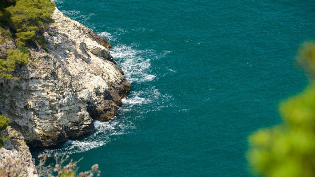 Península Gargano ofreciendo costa rocosa