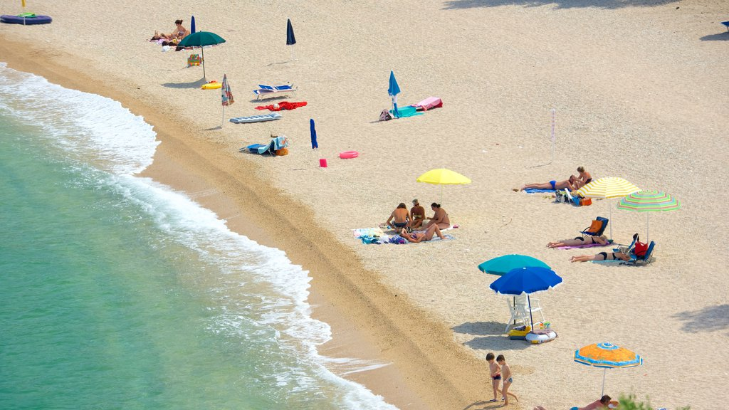 Península Gargano que incluye una playa de arena y vistas generales de la costa