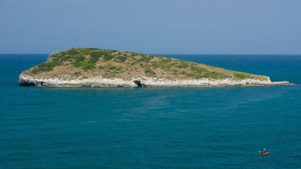 Península Gargano que incluye imágenes de una isla y vistas generales de la costa