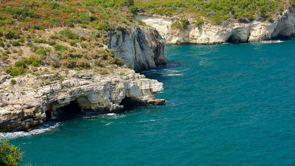 Gargano Peninsula showing rugged coastline