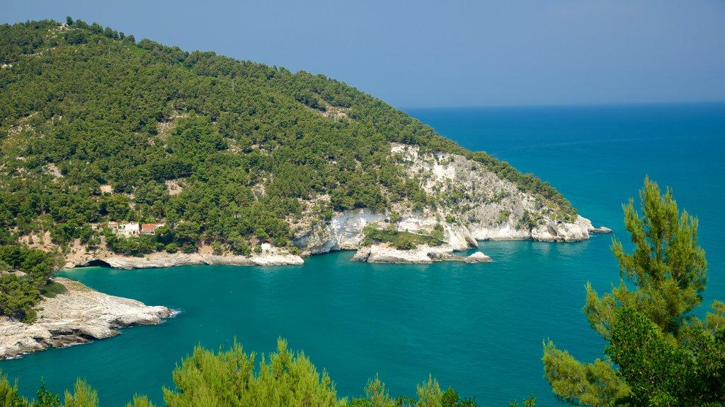 Península Gargano que incluye costa rocosa