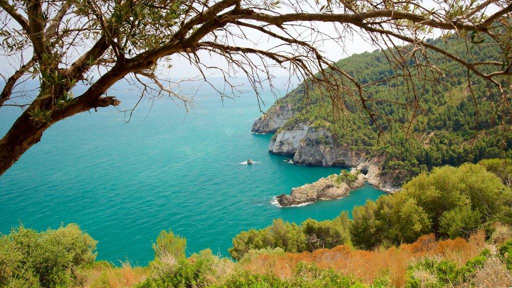 Gargano Peninsula which includes rugged coastline