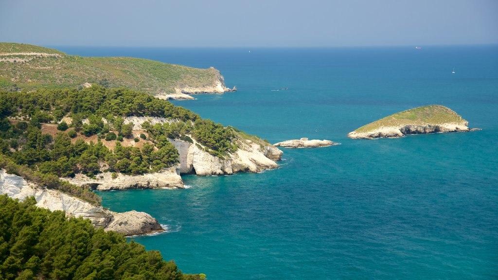 Gargano Peninsula featuring rocky coastline