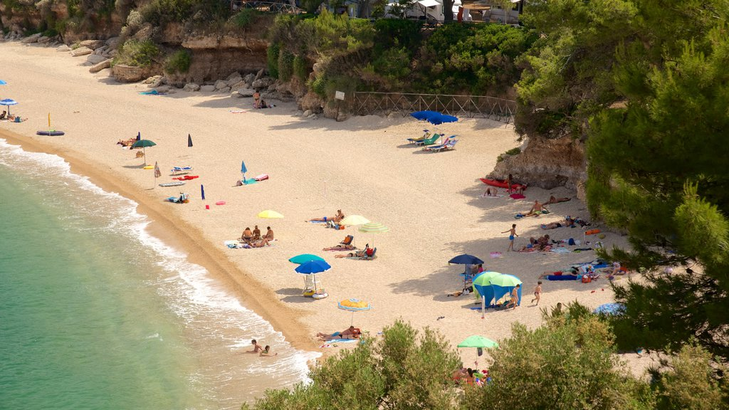 Gargano Peninsula showing general coastal views and a beach as well as a large group of people