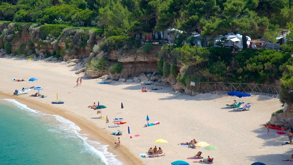 Gargano Peninsula showing a sandy beach and general coastal views as well as a large group of people