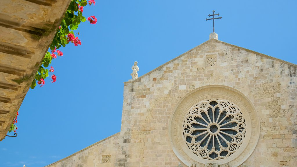 Otranto Cathedral featuring a church or cathedral, heritage architecture and religious aspects