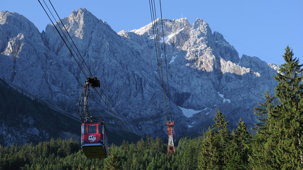Zugspitze featuring forest scenes, mountains and a gondola