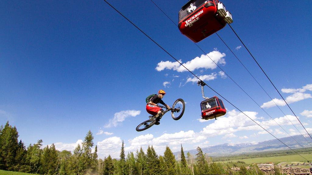Jackson Hole Mountain Resort ofreciendo ciclismo de montaña y una góndola