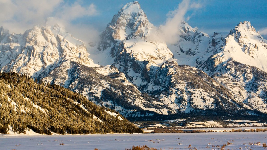 Jackson Hole Mountain Resort showing mountains and snow
