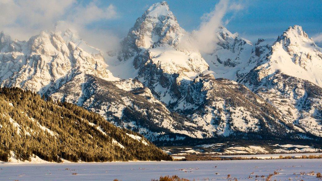 Jackson Hole Mountain Resort mostrando montañas y nieve