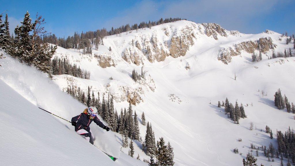 Jackson Hole Mountain Resort mostrando nieve, montañas y esquiar en la nieve