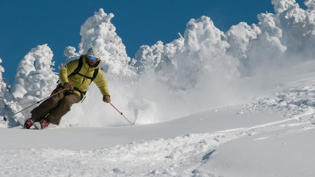 Jay Peak Ski Resort featuring snow skiing and snow