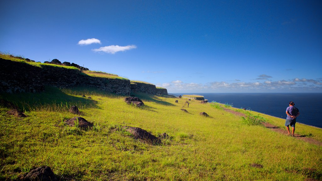 Easter Island which includes tranquil scenes and general coastal views