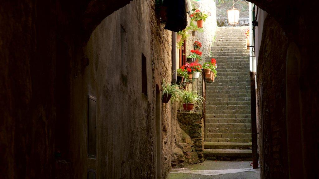 Volterra showing heritage architecture
