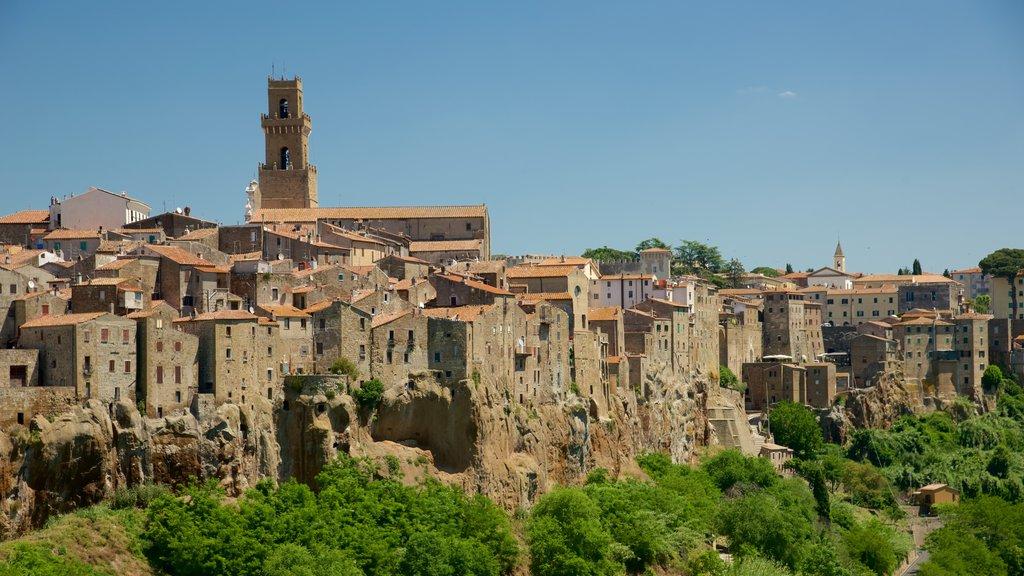 Pitigliano showing a city