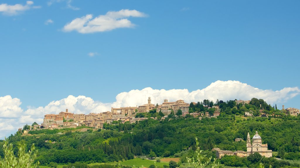Montepulciano which includes a city